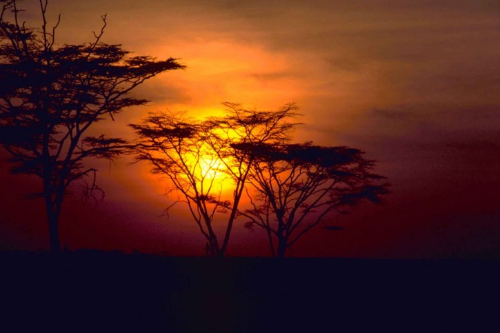 red-beautiful-african-sunset_w725_h483